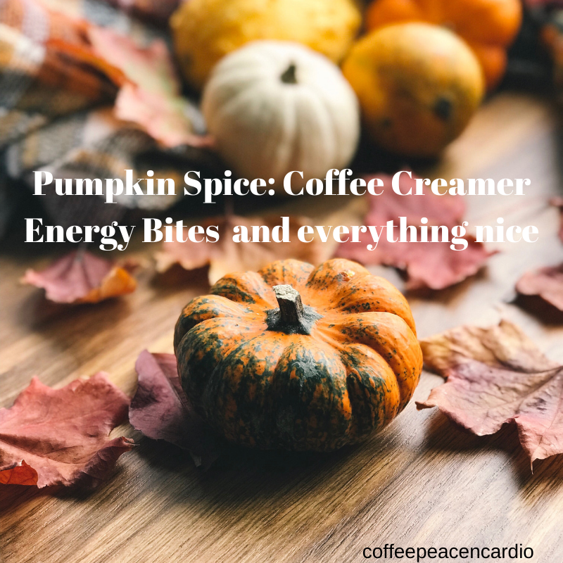 Pumpkin Spice Coffee Creamer Energy Bites and everything nice
